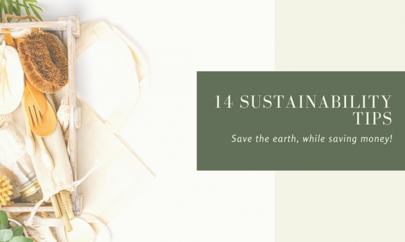 14 Sustainability Tips: Save The Earth, While Saving Money