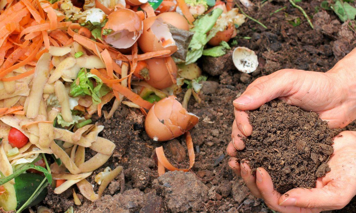 Sustainable Broomfield