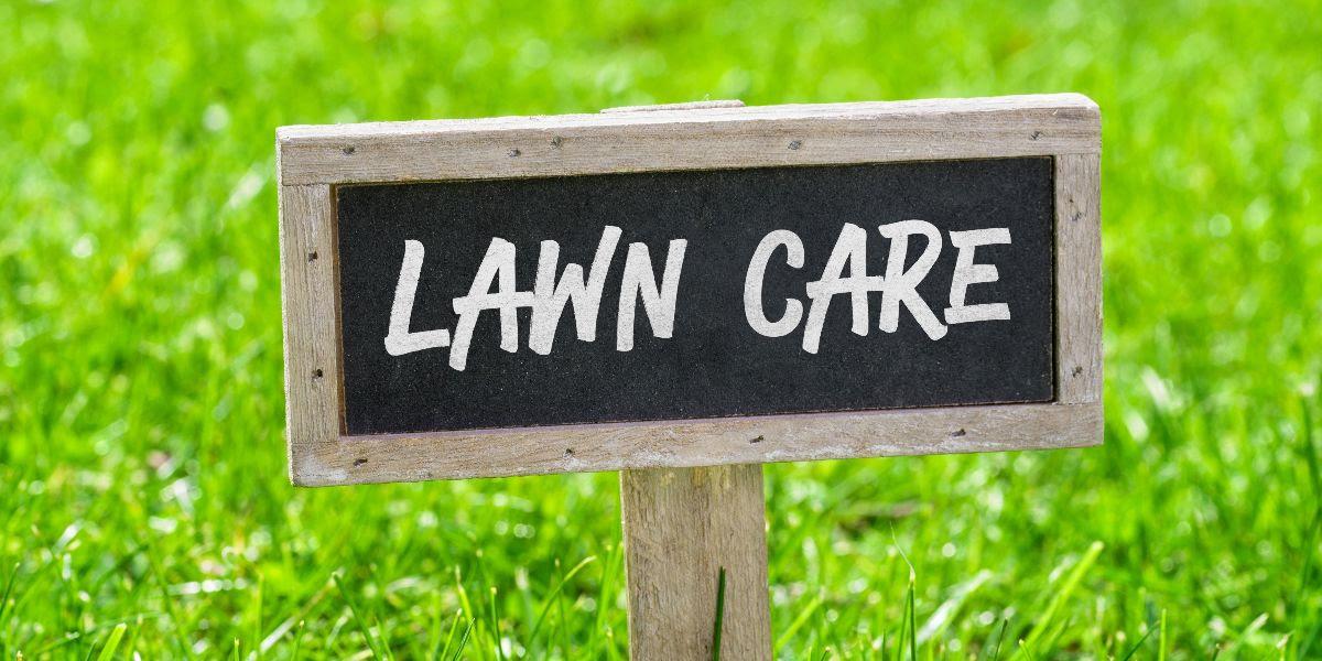 Lawn Fertility & Minimizing Watering Needs
